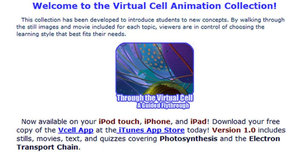 Virtual Cell Animation Collection